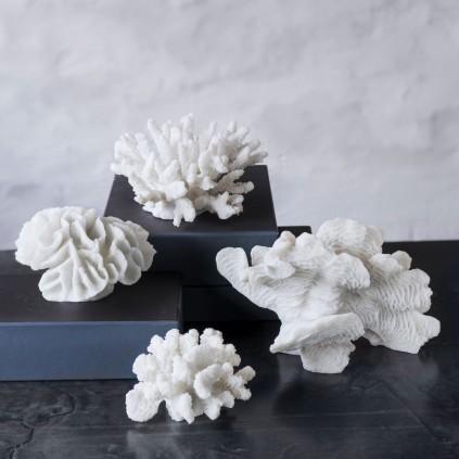 Mette Ditmer Korall L